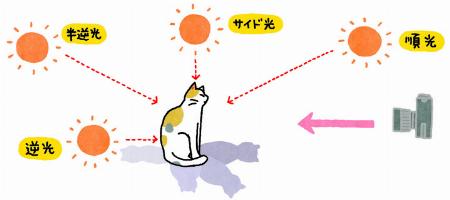 コトキジ KOTOKIJI|株式会社ロフト